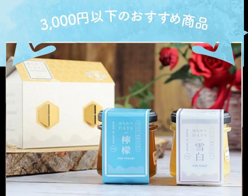 3,000円以下のおすすめ商品 はちみつDAYSギフトBOX(雪白,加哩)